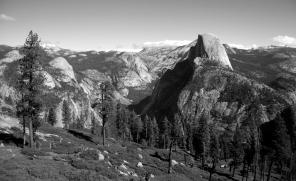 Yosemite National Park. Summer, 2016.