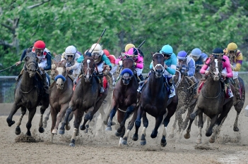 BALTIMORE, MD - MAY 18: War of Will #1 (R), ridden by jockey Tyler Gaffalione, rounds the fourth turn to win the 144th Running of the Preakness Stakes at Pimlico Race Course on May 18, 2019 in Baltimore, Maryland. (Photo by Will Newton/Getty Images)